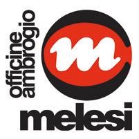 MELESI logo